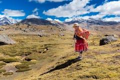 Peruvian indigenous old woman standing weaving traditional clothing. Ausangate mountain, Cordillera Vilcanota range, Peru Stock Photos