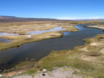 Peruvian Lagoons. Lagoons at the National Reserve of Salinas and Aguada Blanca near Arequipa in the Andean Highlands of Peru Royalty Free Stock Images