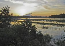 Peruvian lowland Amazon Delta stock photo
