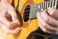 Peruvian Mandolin with 12 strings Stock Images