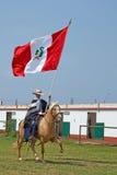 Peruvian Paso Horse and Flag Stock Photos