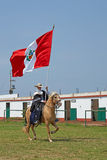 Peruvian Paso Horse and Flag Royalty Free Stock Photography