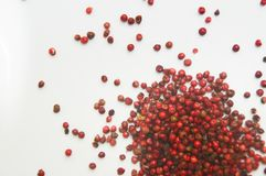 Pink pepper grains. The Peruvian pepper or pink pepper, in whole grains on a white background Royalty Free Stock Image