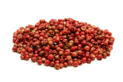 Peruvian Peppercorn Stock Images