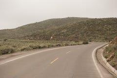 Peruvian roadway stock photo