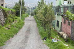 Peruvian Roadway Outdoors Royalty Free Stock Photography