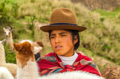 Peruvian Shepherdess with Lama Stock Images