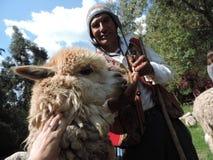Peruvian shephered con su lama foto de archivo