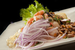 Peruvian Shrimp Ceviche Royalty Free Stock Photos