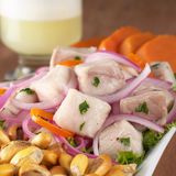 Peruvian-Style Ceviche Stock Photos