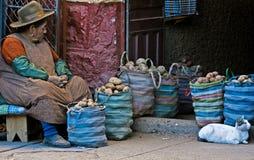 Peruvian woman Stock Images