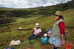 Peruvian woman farmers in Maras, Peru. Maras, Peru - December 23, 2013: Two Peruvian women farmers having a break form their work, in the Moray Inca Terraces Royalty Free Stock Photography