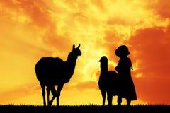 Peruvian woman with lamas at sunset Royalty Free Stock Photography