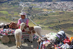 Peruvian woman selling handcrafts Stock Images