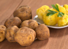 Peruvian Yellow Potato Stock Photos
