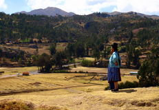 Peruviano fotografia stock libera da diritti