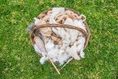 Peruviano le Ande Cuzco Perù della lana dell'alpaga Immagini Stock