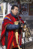 Peruvien street musician. Creativity of nations of the world Royalty Free Stock Photography
