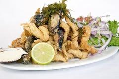 PERUWIAŃSKI jedzenie: smażący RYBI posiłek CHICHARRON Fotografia Stock