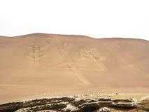 Peruwiańscy kandelabry Fotografia Royalty Free