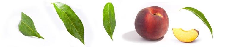 Perzik en bladeren Stock Afbeelding