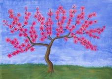 Perzikboom in bloesem, het schilderen Stock Fotografie