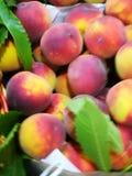 Perziken bij landbouwersmarkt Royalty-vrije Stock Afbeeldingen