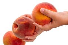 Perziken in de handen van het kind Royalty-vrije Stock Afbeeldingen