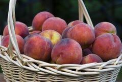 Perziken in een Mand Royalty-vrije Stock Foto