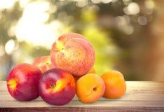 Perziken en abrikozen stock afbeelding