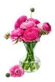 Perzische boterbloemenbloemen (ranunculus stock foto