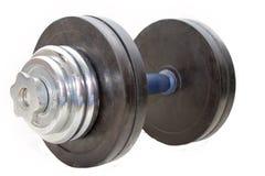 Pesa de gimnasia 25 kilogramos Foto de archivo libre de regalías