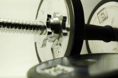 pesa de gimnasia de 10 libras Fotografía de archivo