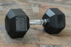 pesa de gimnasia de 20 kilogramos Fotografía de archivo