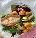 Pesach Seder Immagine Stock Libera da Diritti