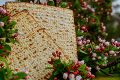 Pesach Still-life with wine and matzoh jewish passover bread. Pesach matzo passover with wine and matzoh jewish passover bread Stock Photo