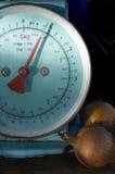 Pesage des oignons Photo stock