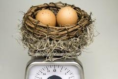 Pesaje del huevo de jerarquía Foto de archivo libre de regalías