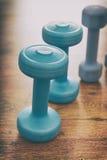Pesas de gimnasia azules en una Flor Imagenes de archivo
