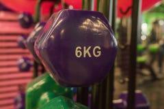 Pesas de gimnasia coloreadas en el gimnasio Foto de archivo