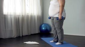 Pesas de gimnasia de elevación del hombre obeso, resolviéndose en casa, calorías ardiendo, motivación imágenes de archivo libres de regalías
