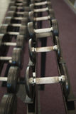 Pesas de gimnasia negras pesadas en el estante en sitio de pesos imagen de archivo