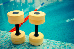 Pesas de gimnasia para Aqua Aerobics Fotos de archivo libres de regalías