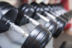 Pesas de gimnasia para el levantamiento de pesas en sitio de la aptitud imágenes de archivo libres de regalías