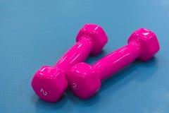 Pesas de gimnasia rosadas para la aptitud Imágenes de archivo libres de regalías