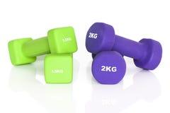 Pesas de gimnasia verdes y púrpuras de la aptitud Imagenes de archivo