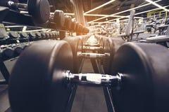 Pesas de gimnasia y equipo diverso para el músculo fuerte del ejercicio en el fi fotos de archivo