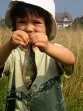 Pesca immagini stock