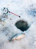 Pesca fotos de stock