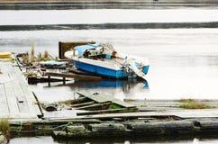 Pesca azul foto de archivo libre de regalías